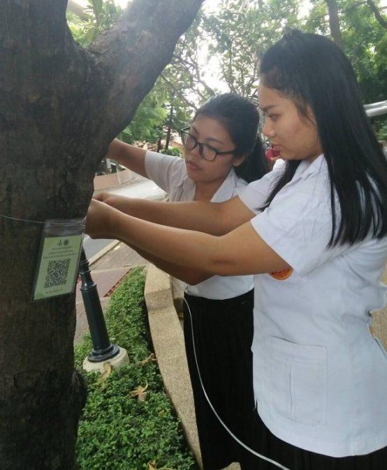 โครงการจัดทำป้ายชื่อพันธุ์ไม้ยืนต้นในมหาวิทยาลัยสยาม